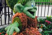 Epcot garden and flower festival / Beautiful character flowers at Epcot disney world