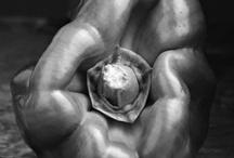 Edward Weston Photography