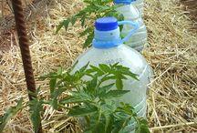 irrigation solaire ☀