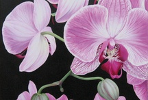 flora SILVIA CABASSA / works painted on canvas with floral theme
