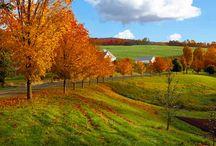 New England Foliage Tour