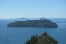 Tairua NZ