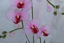 orchid flow stock orchid flow stock
