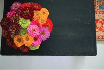 Flowers! / I'd rather have flowers on my table, than diamonds around my neck.  / by Megan Ferguson