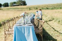 \\ R E A L  E V E N T S : FARM TO TABLE DINNER : WATER \\ / Community Farm to Table Dinner: WATER at Blue Bell Farm in Mid-Missouri.    Invitations, Tea Towel Menus, Place Cards, Signage, and Beverage Menu By The Ink Cafe. Visit Us Online at www.theinkcafe.com