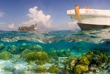 Inspiring Seascapes