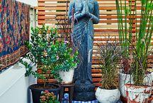 Budas Adry