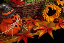 Today is Halloween! / Tosato wishes you a very Happy #Halloween!