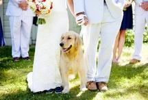 Wedding Shots / by Kate Svoboda