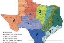 Texas Planting