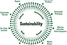 Sustainability and Regenerative Agriculture / Permaculture, Gardening, Up-cycling, Repurposing, Recycling and more