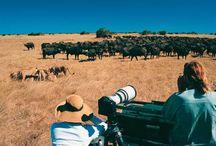 Botswana / Descubre Botswana con Amedida Travel Marketing