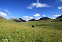 Kyrgyzstan Expedition / Snow leopard expedition conservation volunteer in Kyrgyzstan 2014
