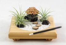 Jardines Feng Shui