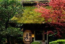 Architecture - gardens