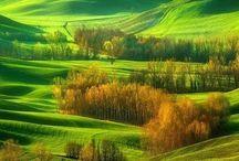 moja Toscana!