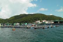 Aquaculture Pics