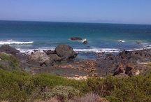 Ocean Obssesions
