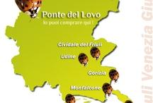 Dove comprare Ponte del Lovo / Le Librerie in Friuli Venezia Giulia