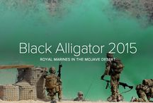 Royal Marines Exercise Black Alligator 2015 / Approximately 1,000 Royal Navy personnel have descended on California's Mojave Desert, which offers a unique and challenging environment and excellent training opportunities that cannot be replicated in the UK.