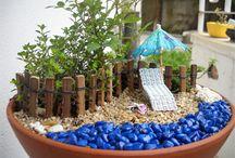 Fairy garden and terrarium