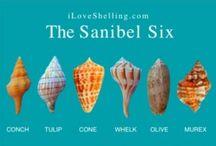I Love Sanibel