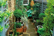 Small Yards