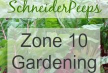 Zone 10 Gardening / This board is dedicated to gardening in zone 10.
