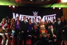 WrestleMania 31 in Santa Clara! / World Wrestling Entertainment (WWE) will be holding WrestleMania 31 at Levi's Stadium in Santa Clara on March 29, 2015!
