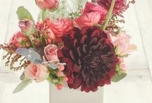 Flowers / by Ryan Rogers