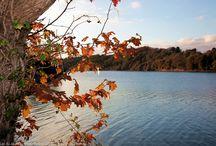 Lac du Jaunay / Photos du Lac du Jaunay en Vendée près de Landevieille.
