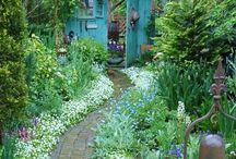 Green in the garden
