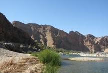 Oman / In oktober 2012 ben ik op uitnodiging van het verkeersbureau van Oman mee geweest naar dit geweldige land. We hebben geslapen in de Wahibi Sands, in de Jebel Shams geslapen boven op de berg. Een geweldig land met fantastische inwoners