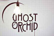 Ghost Orchid Bride / SHOWROOM / The Ghost Orchid Bridal SHOWROOM