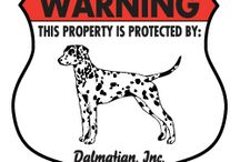 Dalmatian Signs and Pictures / Warning and Caution Dalmatian Dog Signs. https://www.signswithanattitude.com/dalmatian-signs.html
