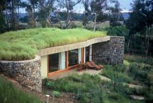 Green Roofs / Living Roofs