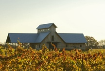 Great wineries / Wineries I've been to or would like to visit. / by Devyn Conner Bulmahn