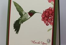 Stampin up picture perfect ( kingfisher )