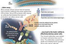 Cancer, Immune system