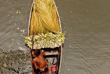 Bangladesh,Burma,Taiwan