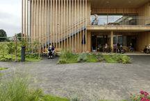 ARCH | facade | wood