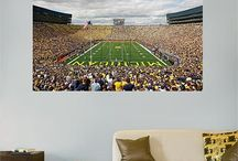 Michigan Wolverines / The Best Michigan Wolverines stuff on the planet!