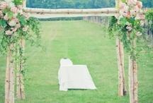 Wedding arches, Chuppa & trellis