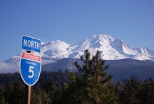 Best of Mt Shasta Conference / Annual Summer Conference & Festival held in Mount Shasta, California - Contact us if you would like to have vendor space or be a musician for the outdoor festival -  See  http://thebestofmtshasta.com