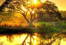 Sun Rise & Sun Set