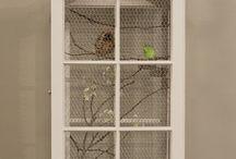Birds / by LoRae Cox