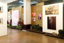 Exposições e oficinas