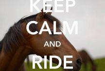 Konie!