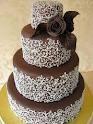 Torte torte torte!