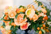 Wedding accessories / by floragown